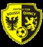 Boussy-Quincy